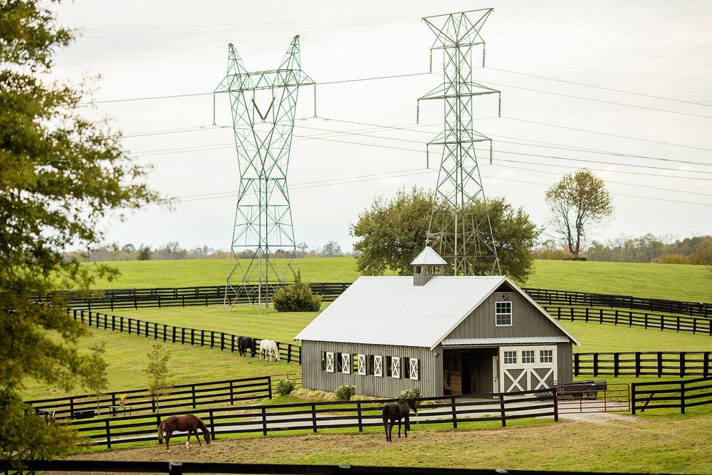 Seriously_Sabrina_Photography_Lexington_Kentucky_Seven_Acre_Farm_Engagement_JN1.jpg