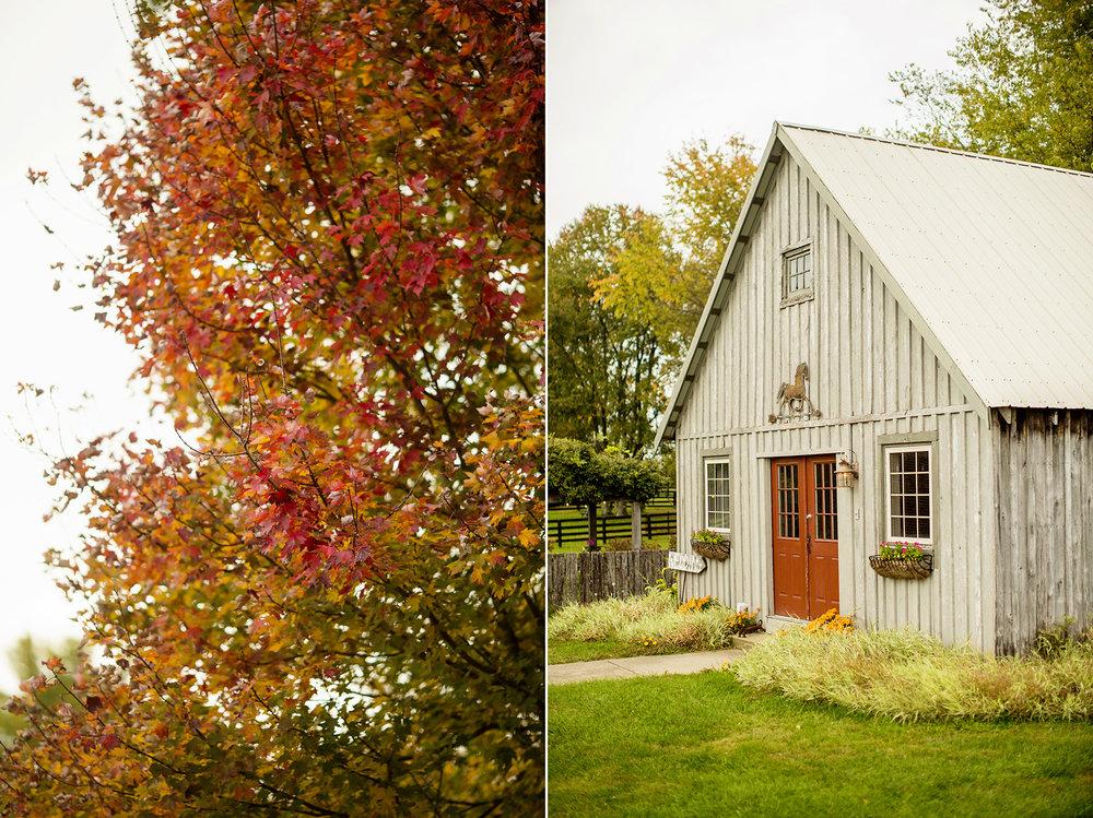 Seriously_Sabrina_Photography_Lexington_Kentucky_Seven_Acre_Farm_Engagement_JN2.jpg