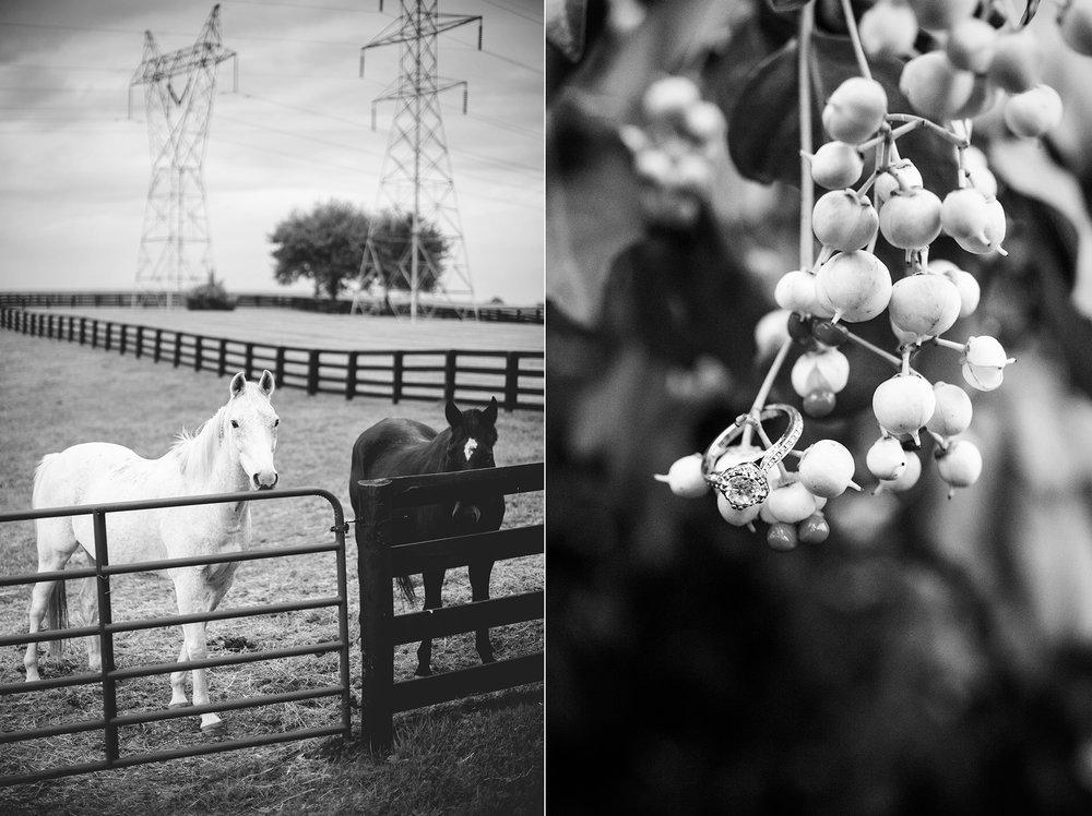 Seriously_Sabrina_Photography_Lexington_Kentucky_Seven_Acre_Farm_Engagement_JN18.jpg