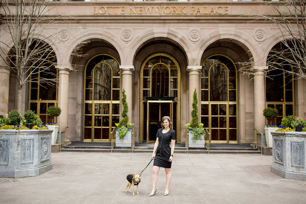 Seriously_Sabrina_Photography_New_York_City_NYC_Gossip_Girl_Dog_Blogger_Little_Holly_45.jpg