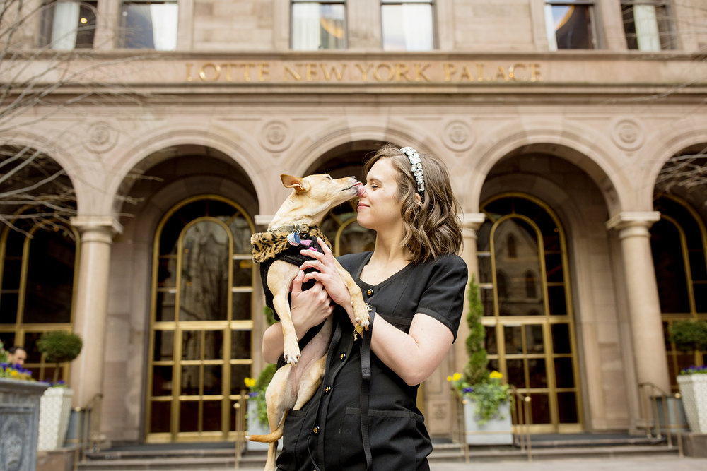 Seriously_Sabrina_Photography_New_York_City_NYC_Gossip_Girl_Dog_Blogger_Little_Holly_48.jpg