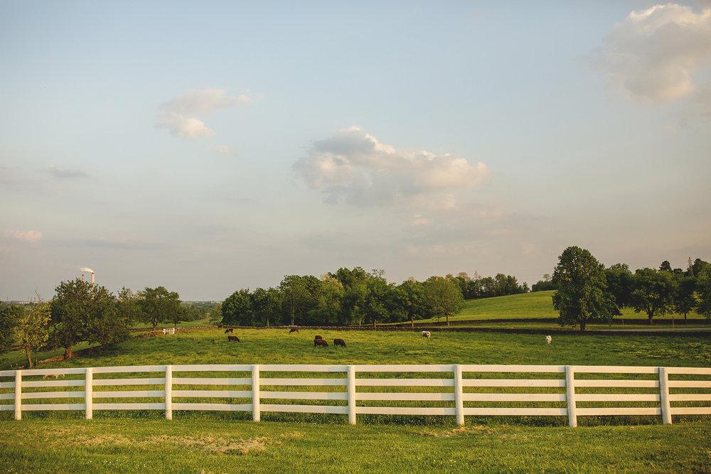Seriously_Sabrina_Photography_Shakertown_Kentucky_Spring_Engagement_John_MC_16.jpg