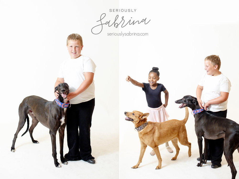 Seriously_Sabrina_Photography_Camp_Jean_Fundraiser_July_2018_Canines_and_Chereography16.jpg
