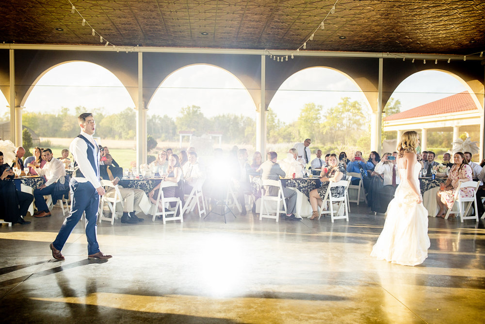 Seriously_Sabrina_Photography_Dayton_Ohio_Great_Gatsby_Wedding_Cedar_Springs_Pavillion_Harper_80.jpg