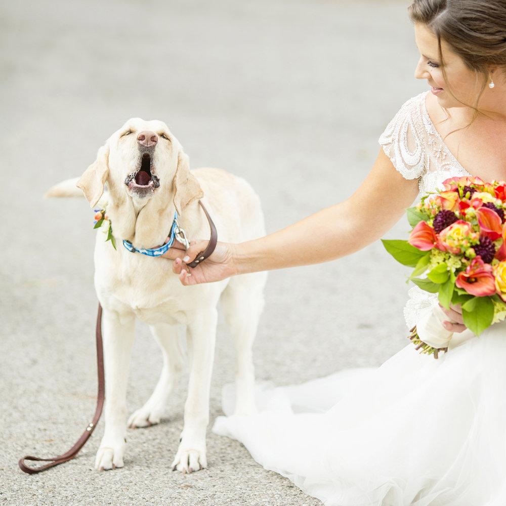 Seriously_Sabrina_Photography_Lexington_Kentucky_Loudon_House_Wedding_GrigoleitByard_38.jpg