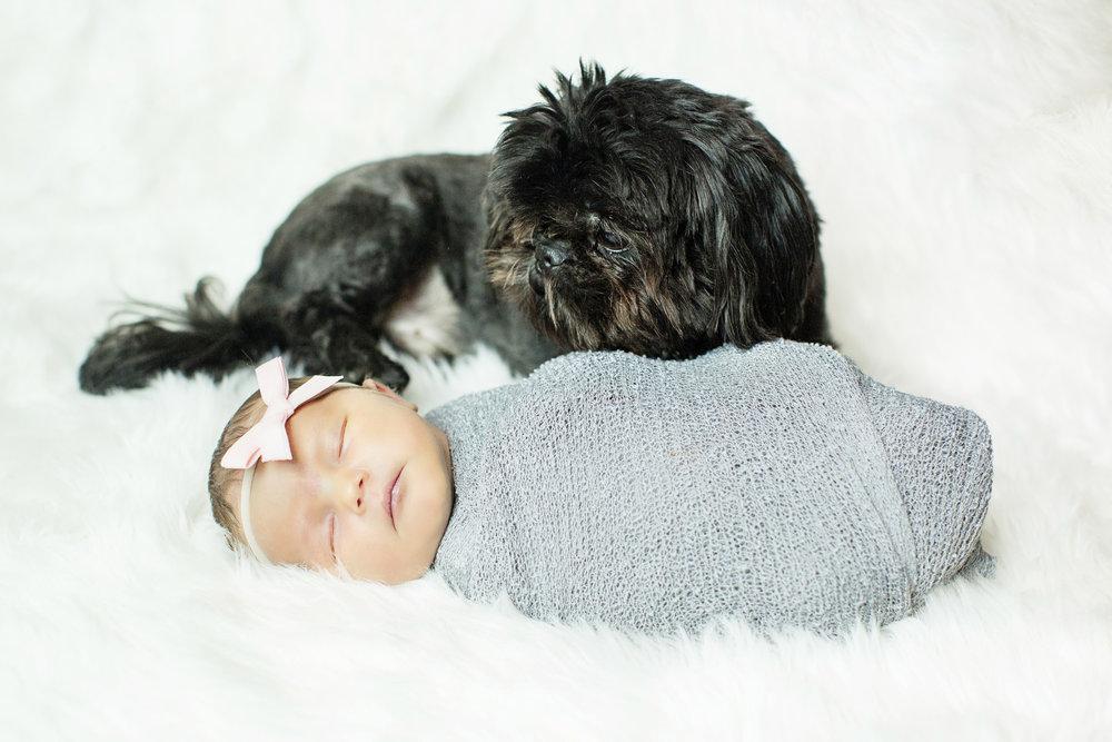 Seriously_Sabrina_Photography_Lexington_Kentucky_Studio_Family_Newborn_Portraits_Wood_21.jpg