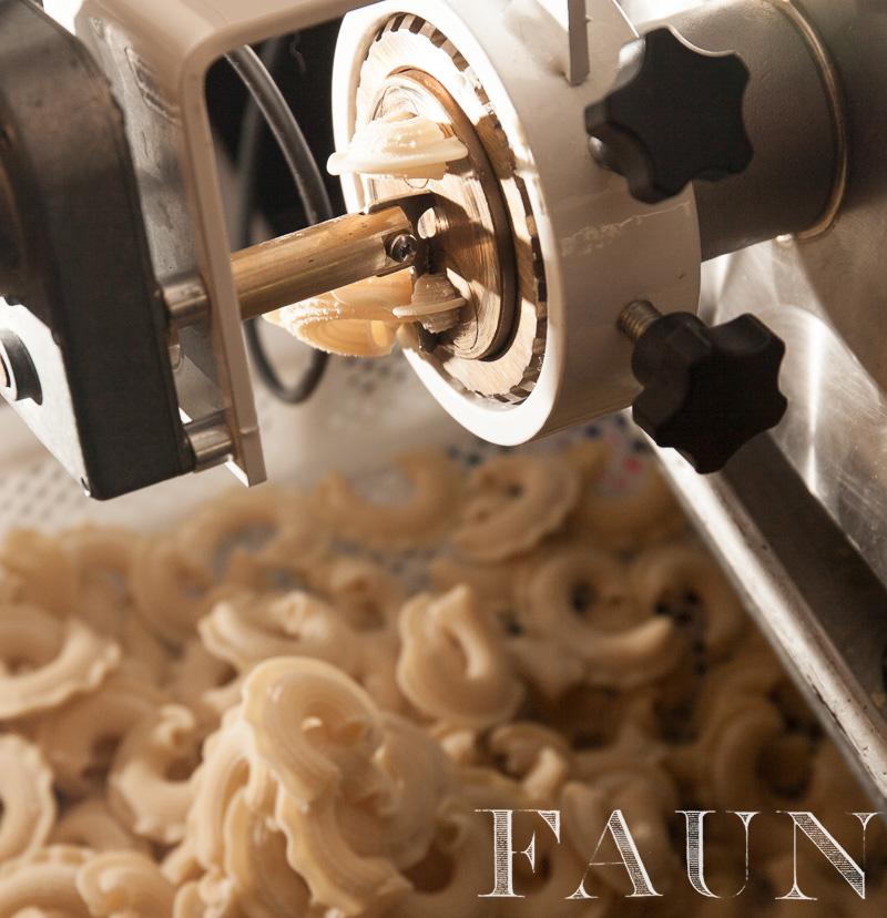 pasta-extruder.jpg