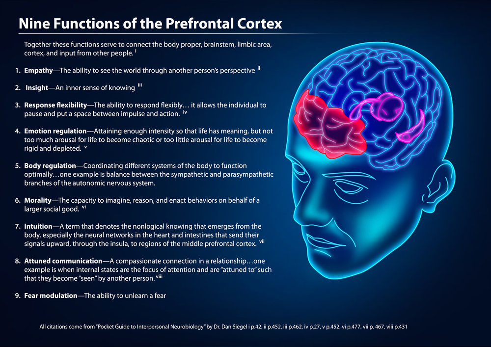 9 functions of the PreFrontal cortex