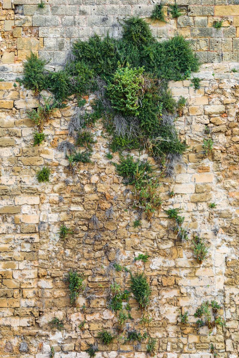 PalmaDeMallorca_JennaCarliePhoto_024_used in 2nd bookjpg.jpg