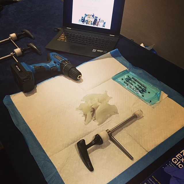Ready for hands-on demonstrations at VNS 2017! Veterinary spinal stabilization is the topic for today's meeting!