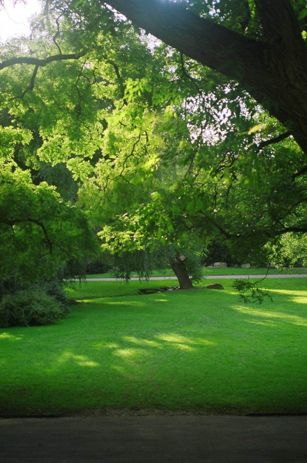 Bronx Botantical Gardens