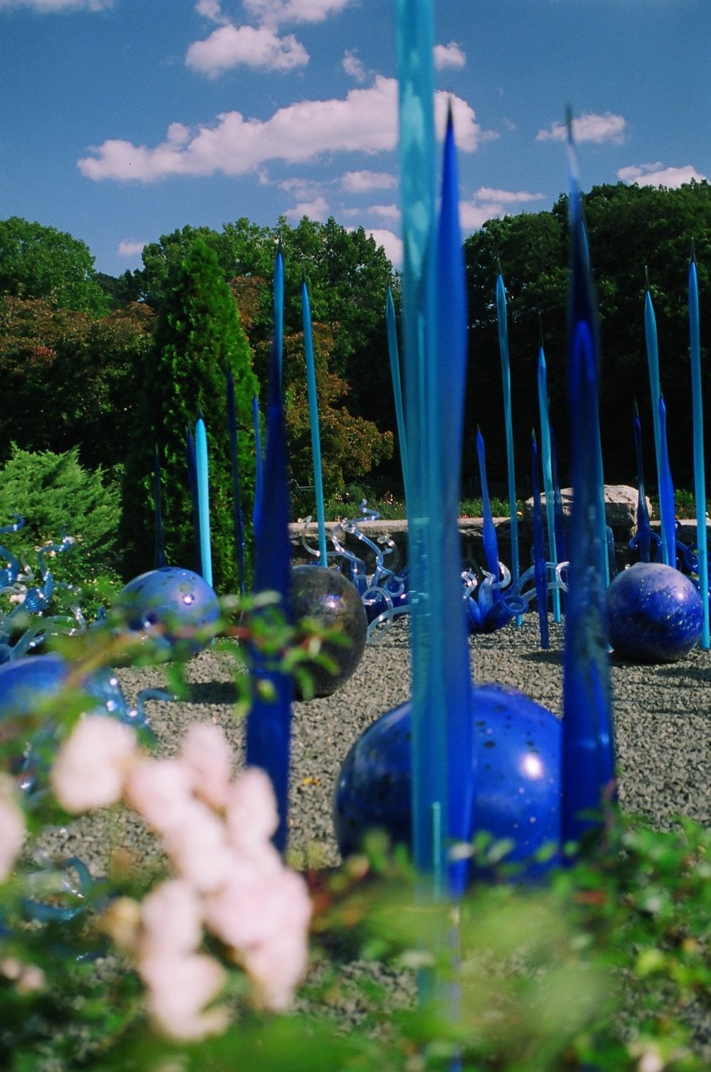 Chihuly Exhibition, Bronx Botantical Gardens