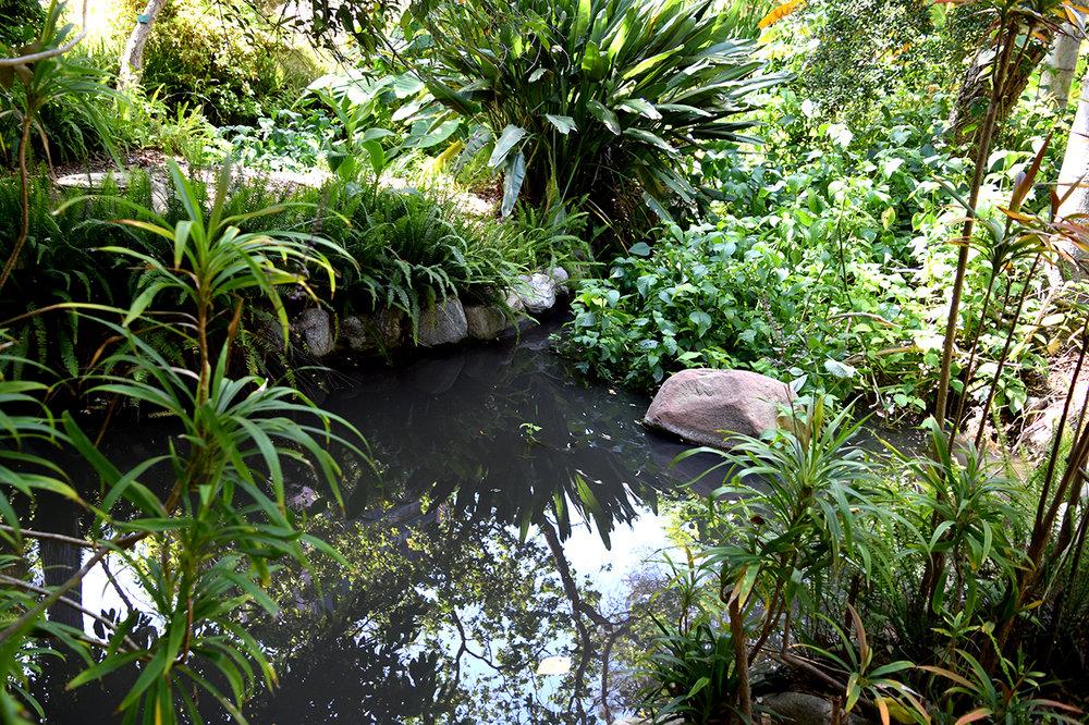 Mildred E Mathias Botanical Garden Review Grading Gardens