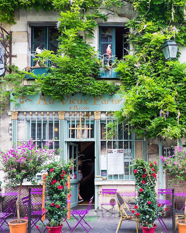 A block from Notre Dame is this showstopper. Old world cafe, outdoor seating and vibrant foliage. Check! ✔️ #sliceofparis #iamatraveler #visitparis #parisjetaime #parislife #cafelife #facadelovers