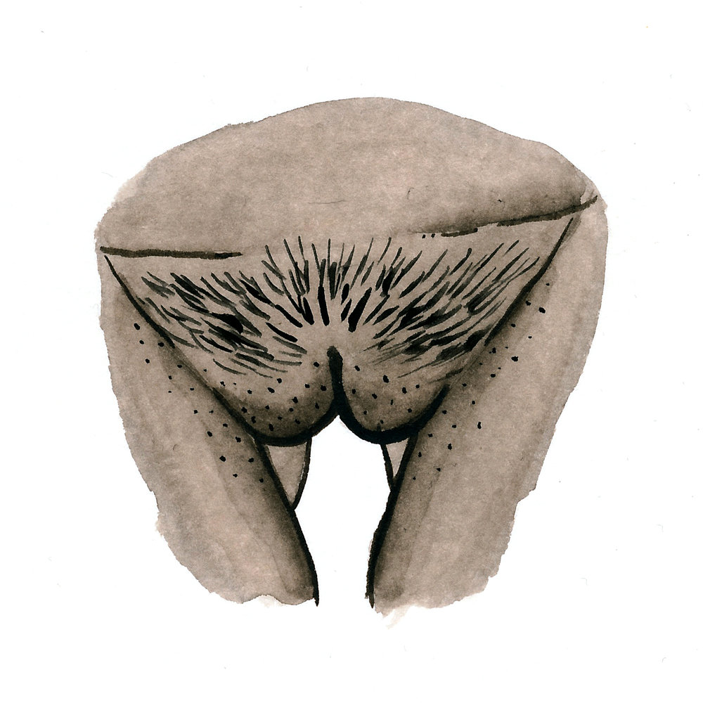 Vulva Gallery Brown57.jpg