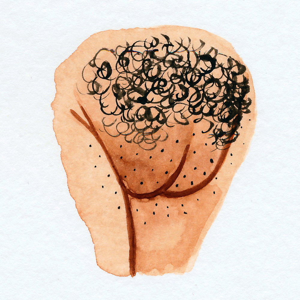 Vulva Gallery Brown62.jpg