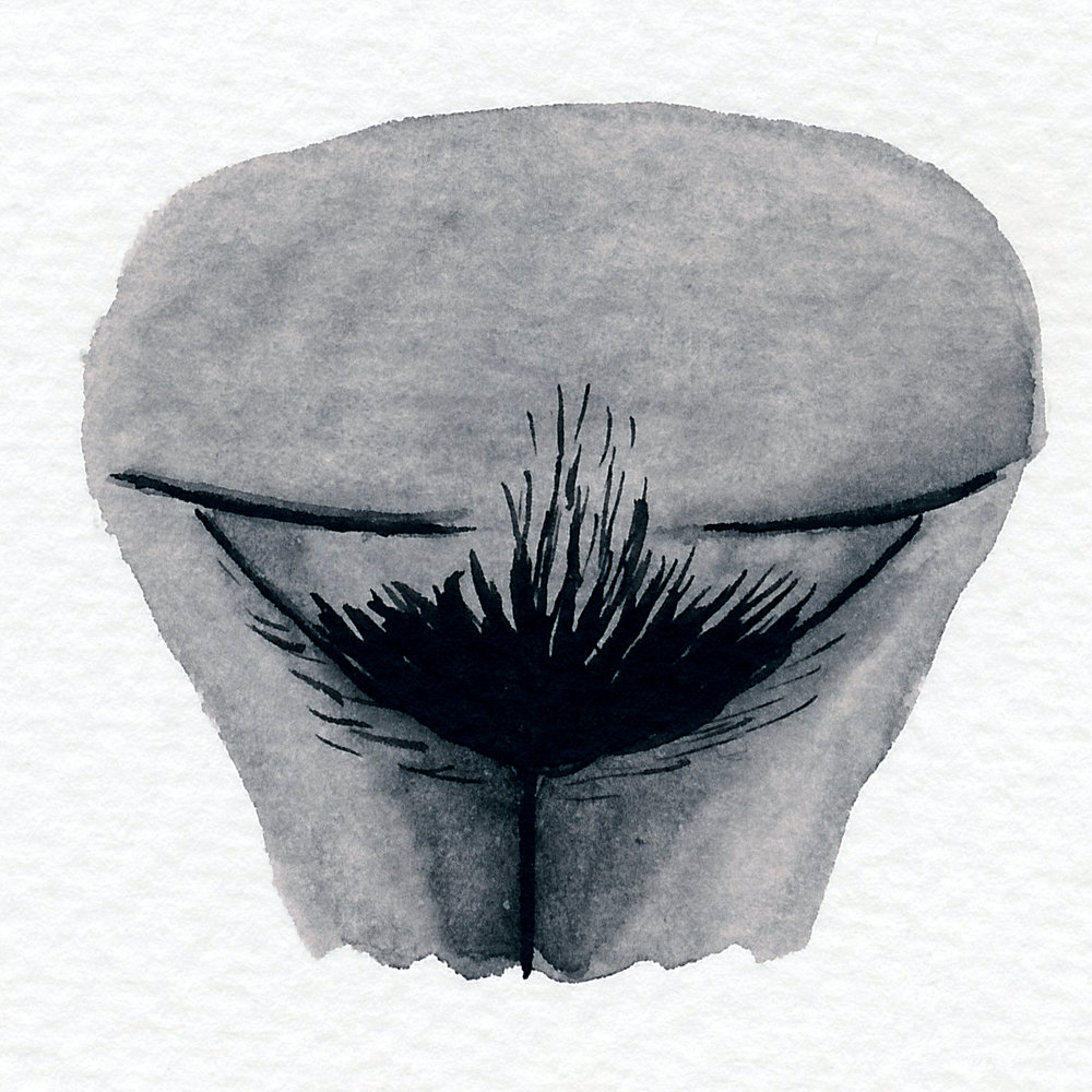 Vulva Gallery Brown67.jpg