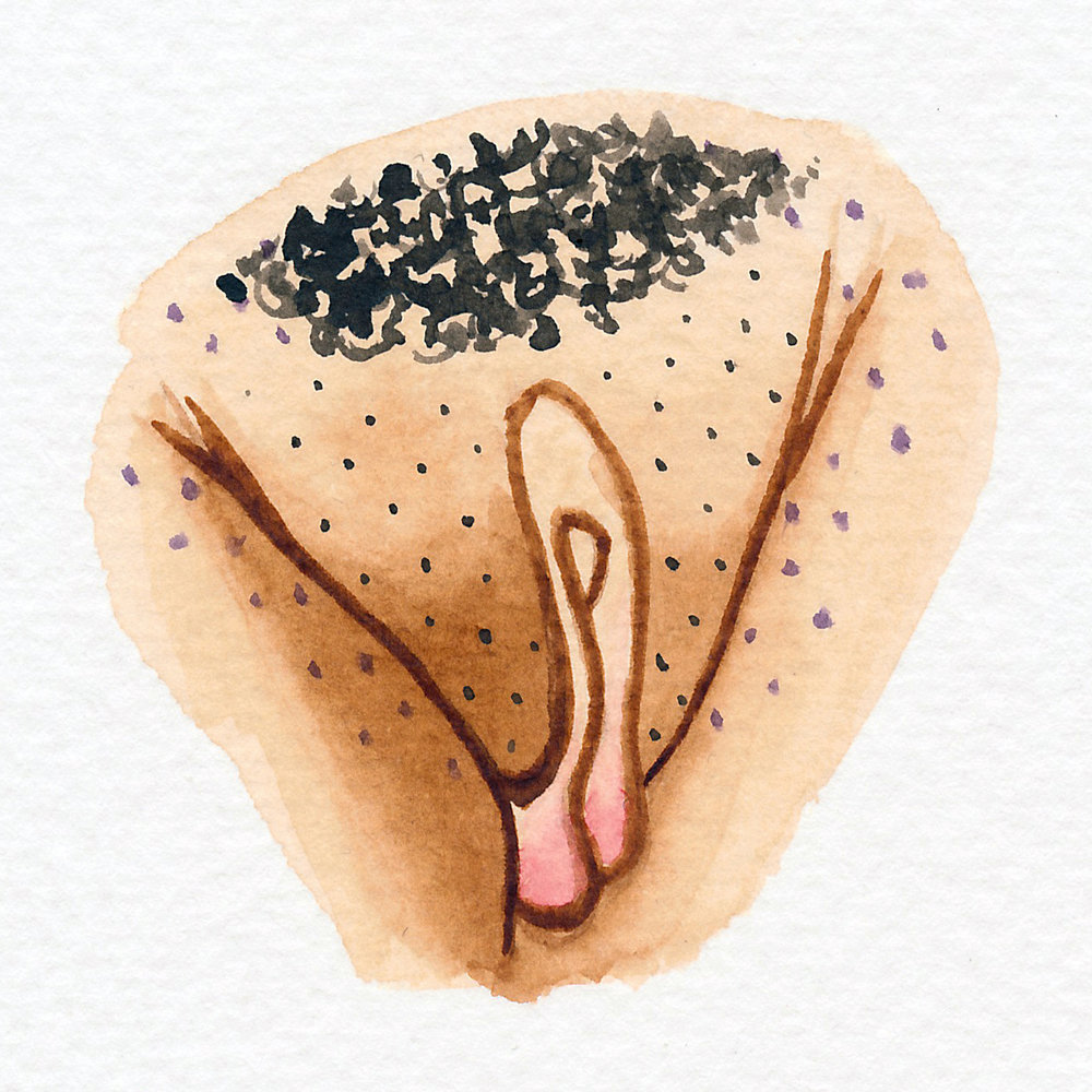 Vulva Gallery Brown86.jpg
