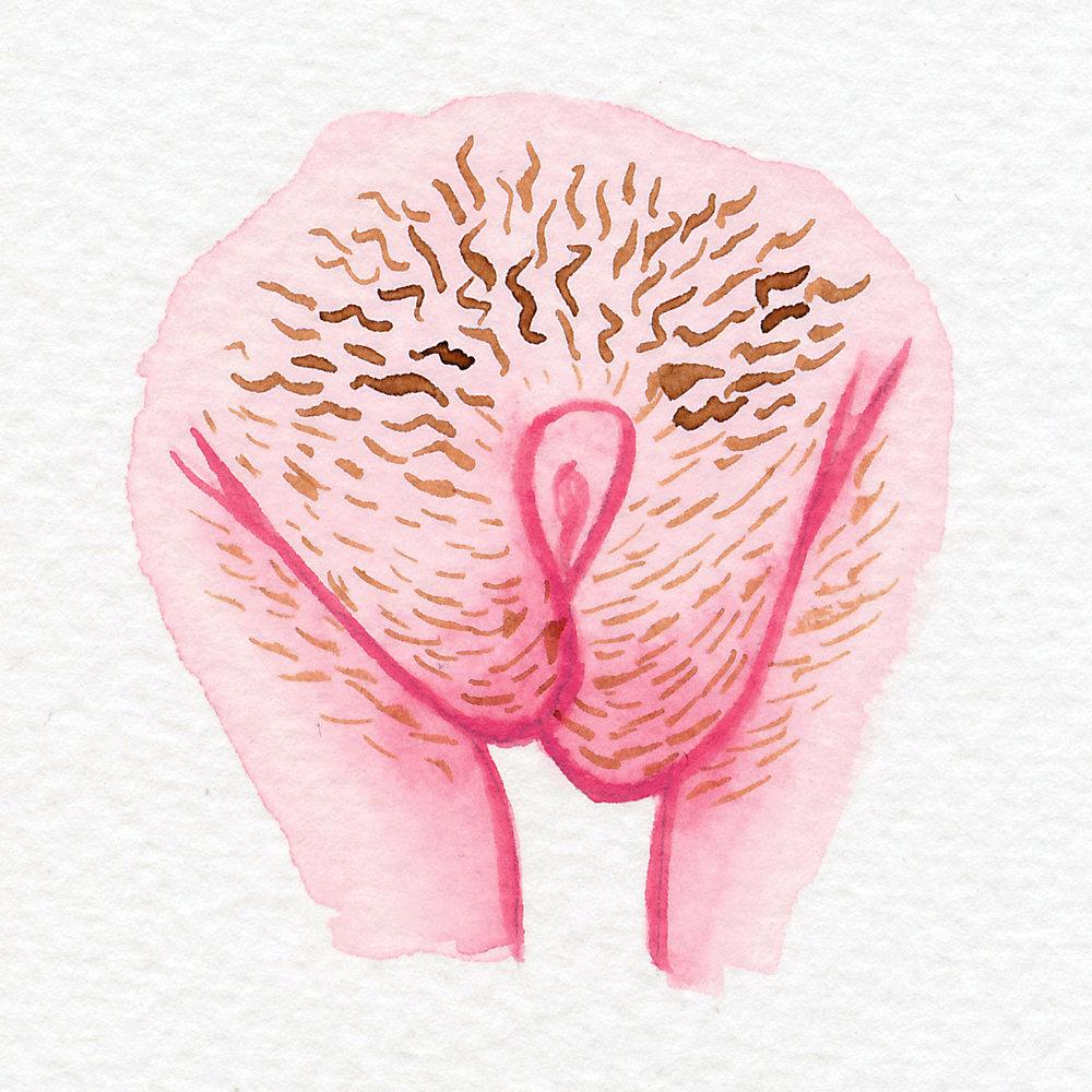 Vulva Gallery Pink53.jpg