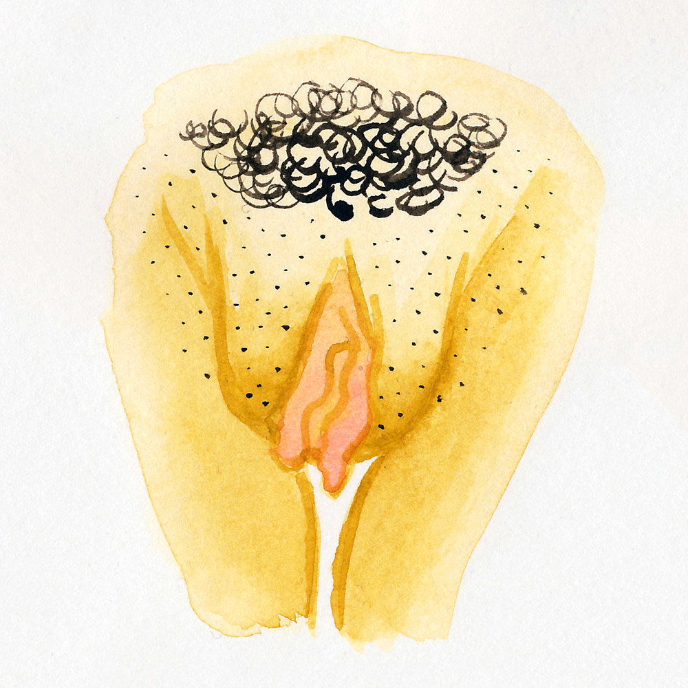 Vulva Gallery Yellow28.jpg