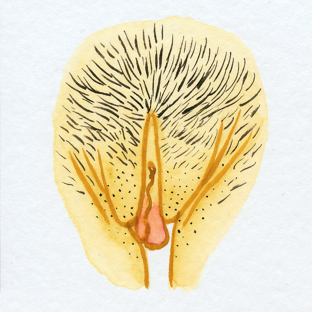 Vulva Gallery Yellow30.jpg