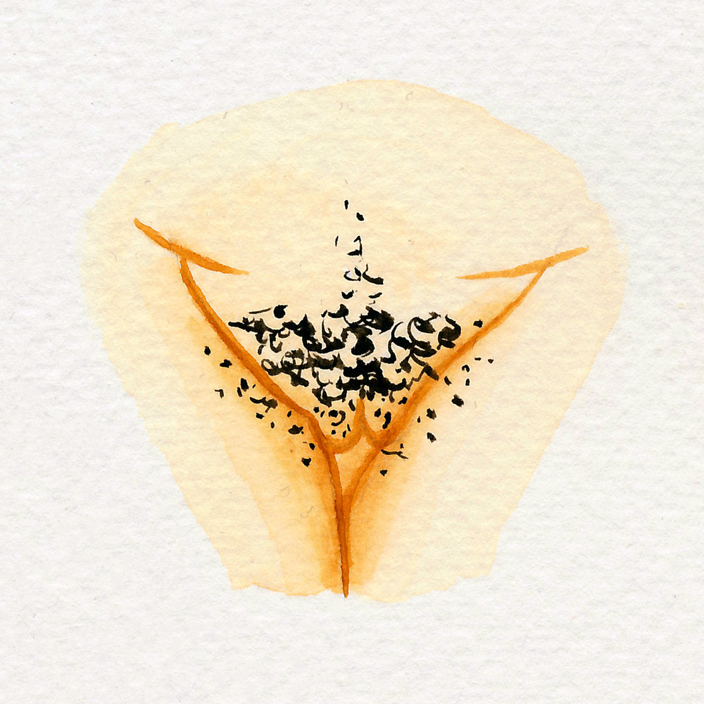 Vulva Gallery Yellow44.jpg