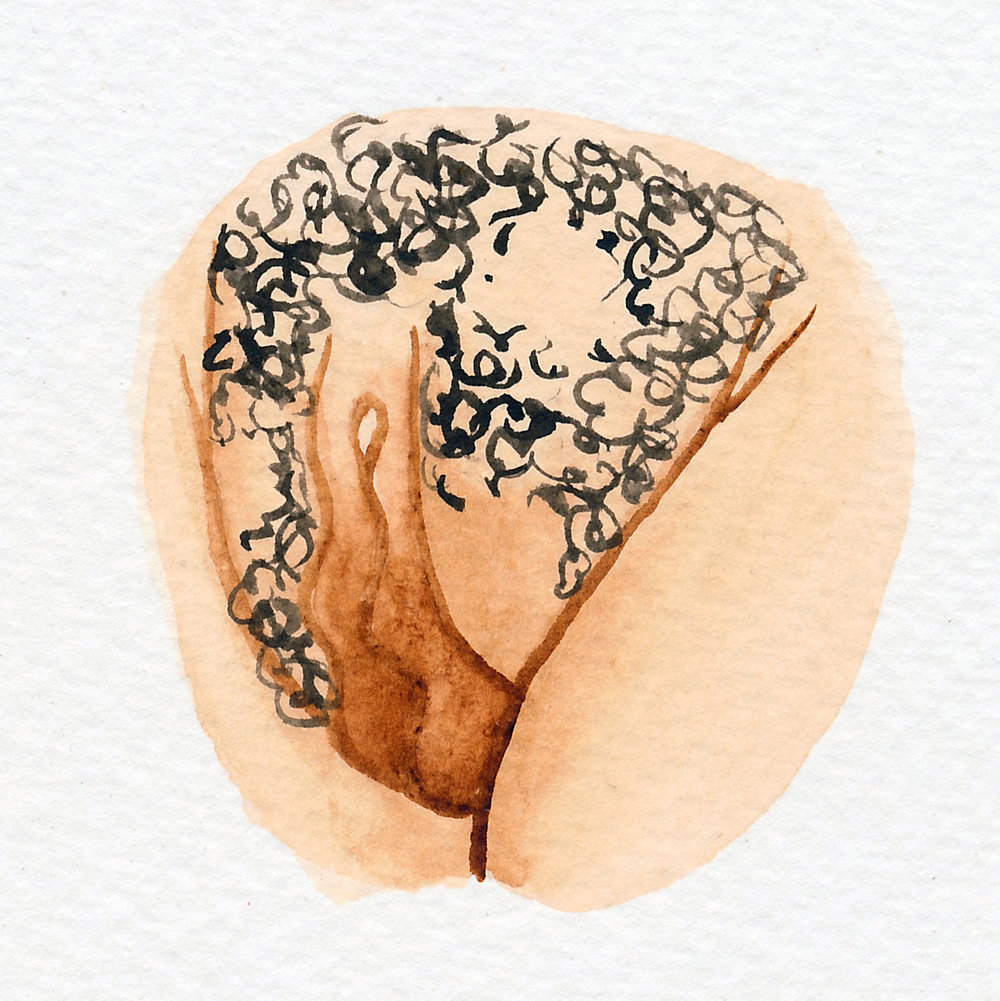 Vulva Gallery Brown143.jpg