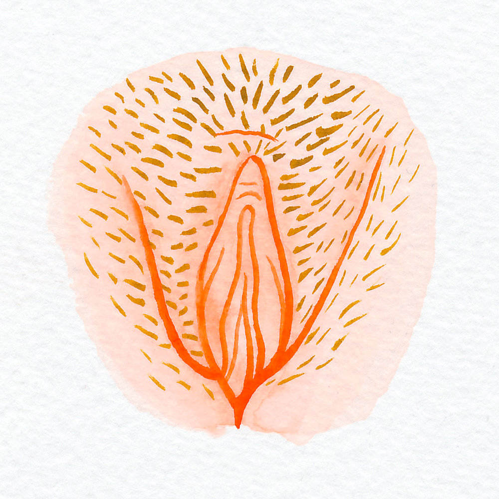 Vulva Gallery Orange4.jpg
