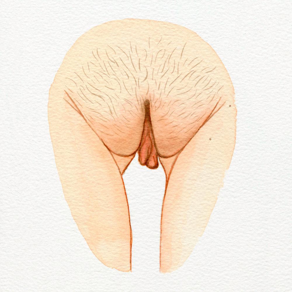 Vulva Gallery Pink139.jpg