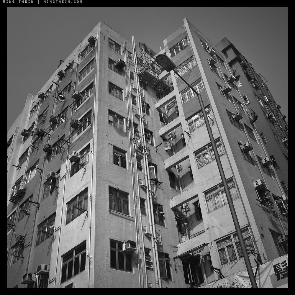 25_G007450 verticality XXV copy.jpg