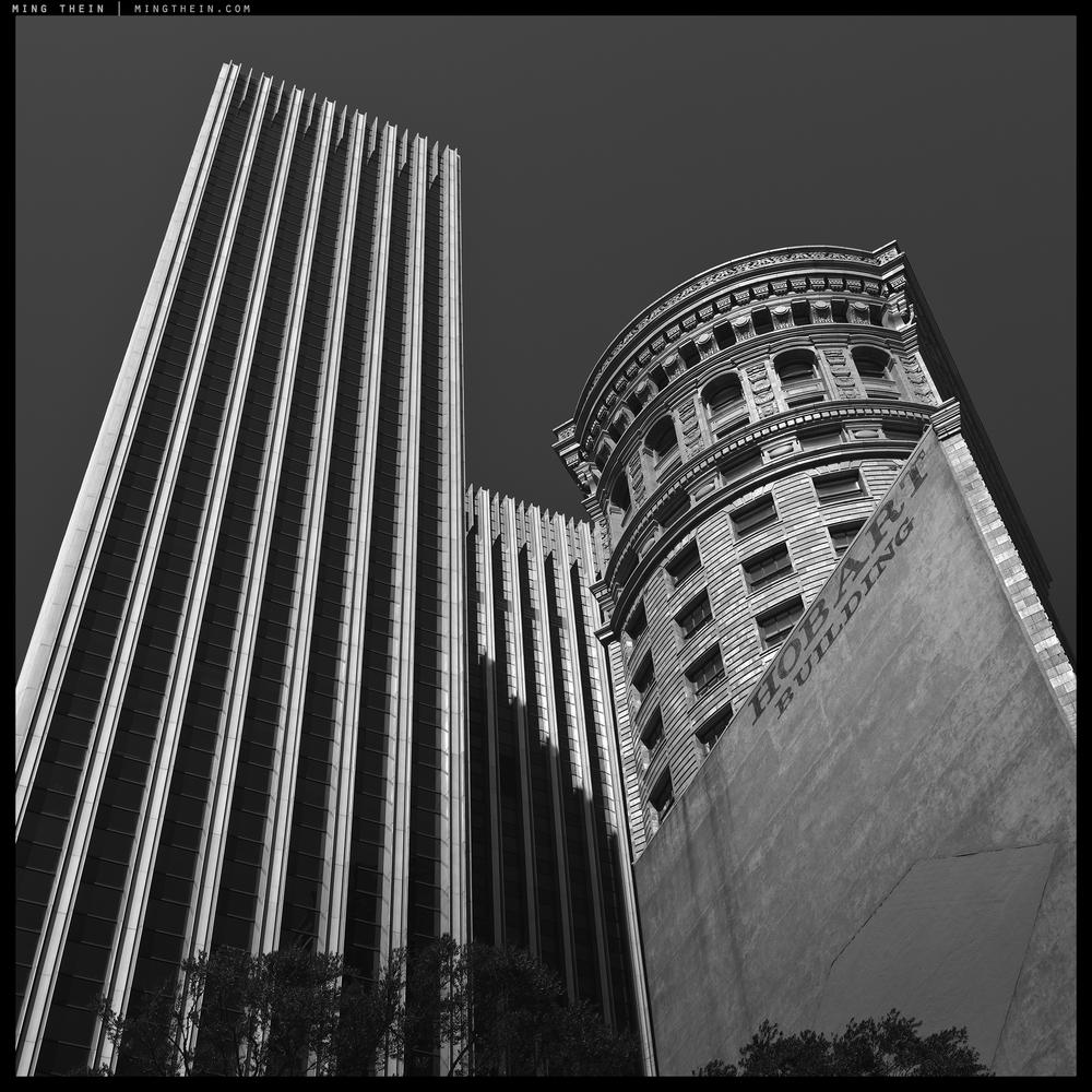 42_64Z3433 verticality XLII copy.jpg