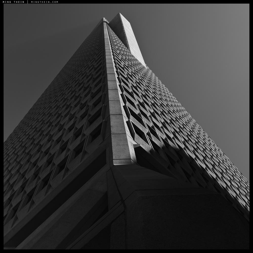 45_64Z3459 verticality XLV copy.jpg