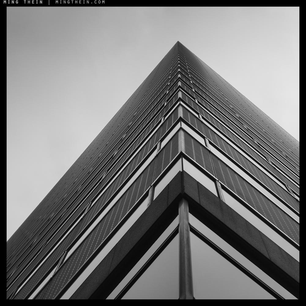 49_7501653 verticality XLIX copy.jpg