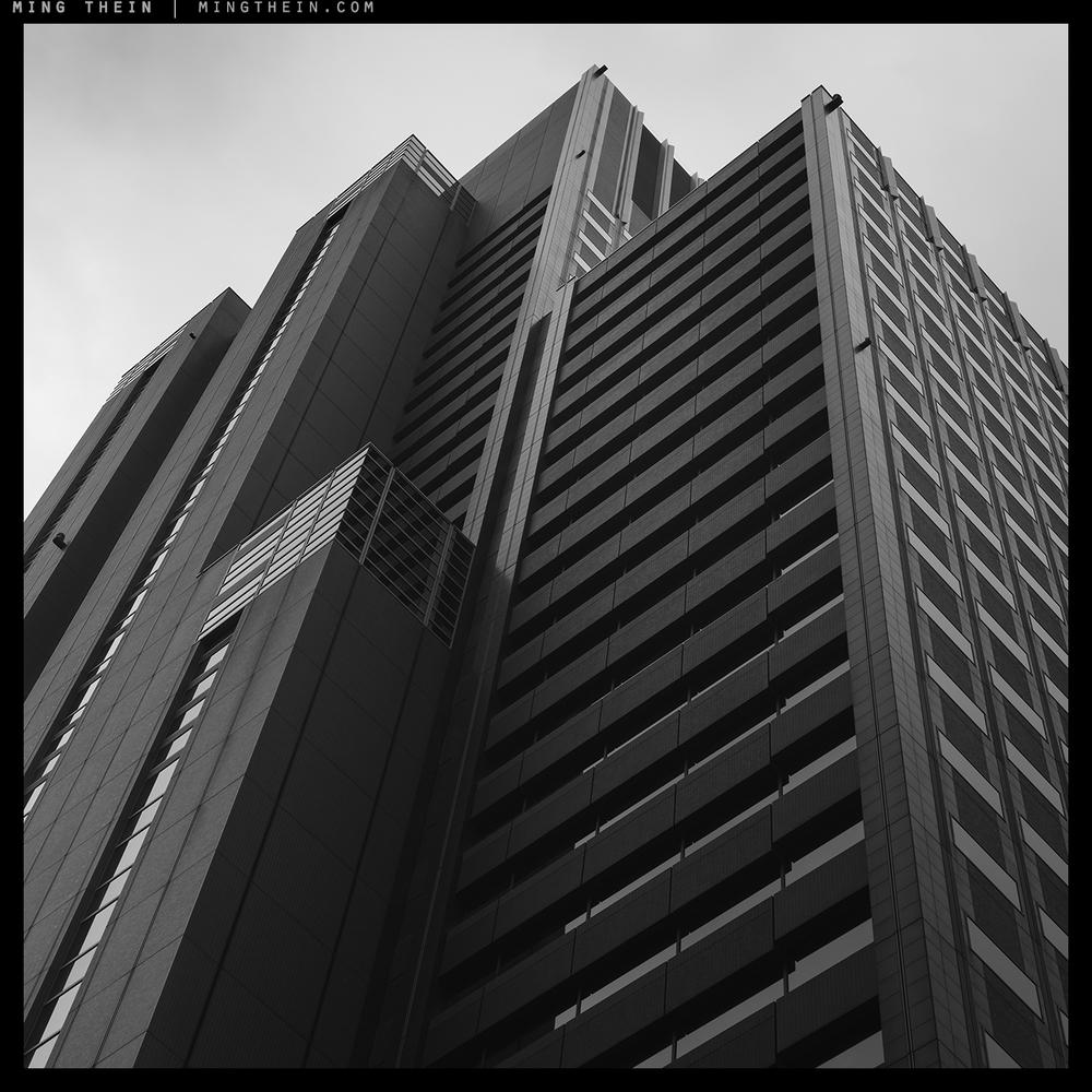 52_7501935 verticality LII copy.jpg