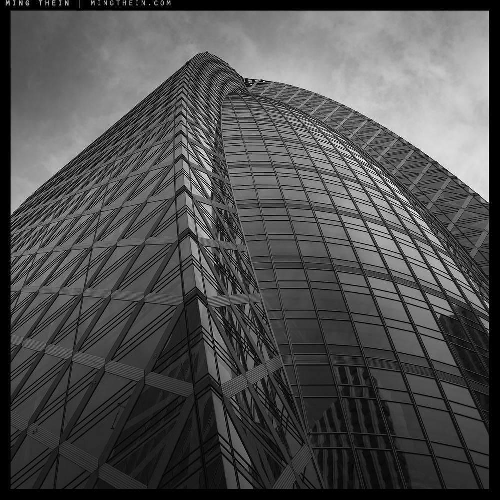 55_7501631 verticality LV copy.jpg
