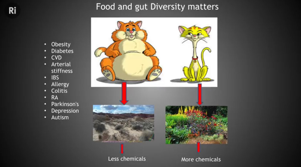 Keep your microbiome looking like a rich English garden.  Outtake from The Royal Institution Talk:    What Role Does our Microbiome Play in a Healthy Diet?