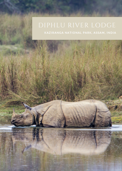 DIPHLU RIVER LODGE -