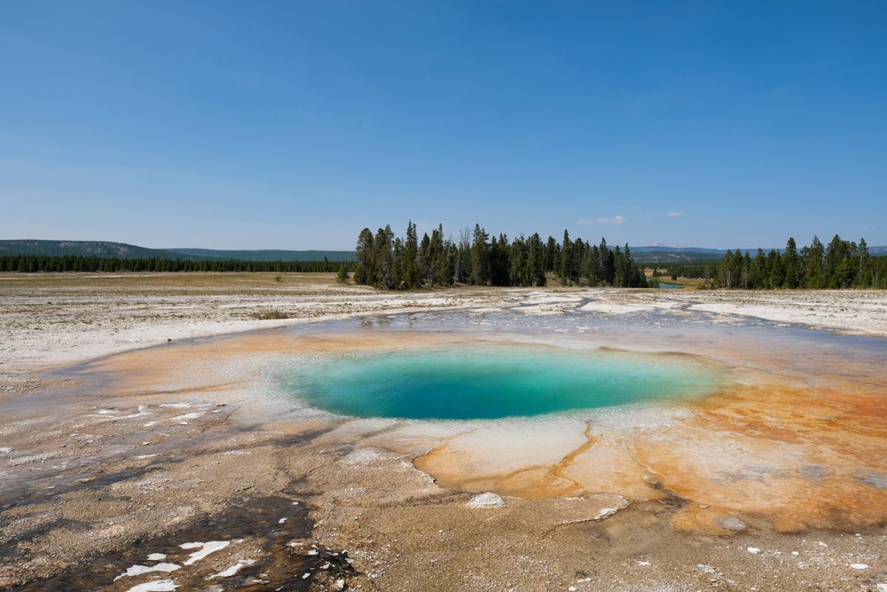 Travel - Midday at Yellowstone National Park