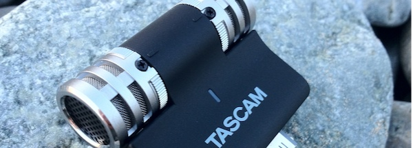 Tascam iM2 Review