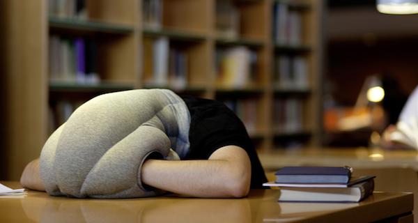 kickstarter-ostrich-pillow.png