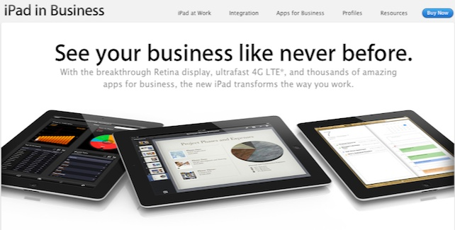 iPad-Small-Business-Use.jpg