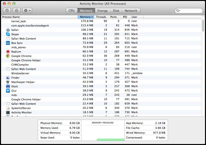 Mavericks Activity Monitor Memory Tab