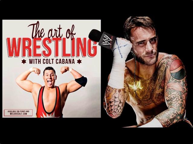 Art-Of-Wrestling-CM-Punk.jpg