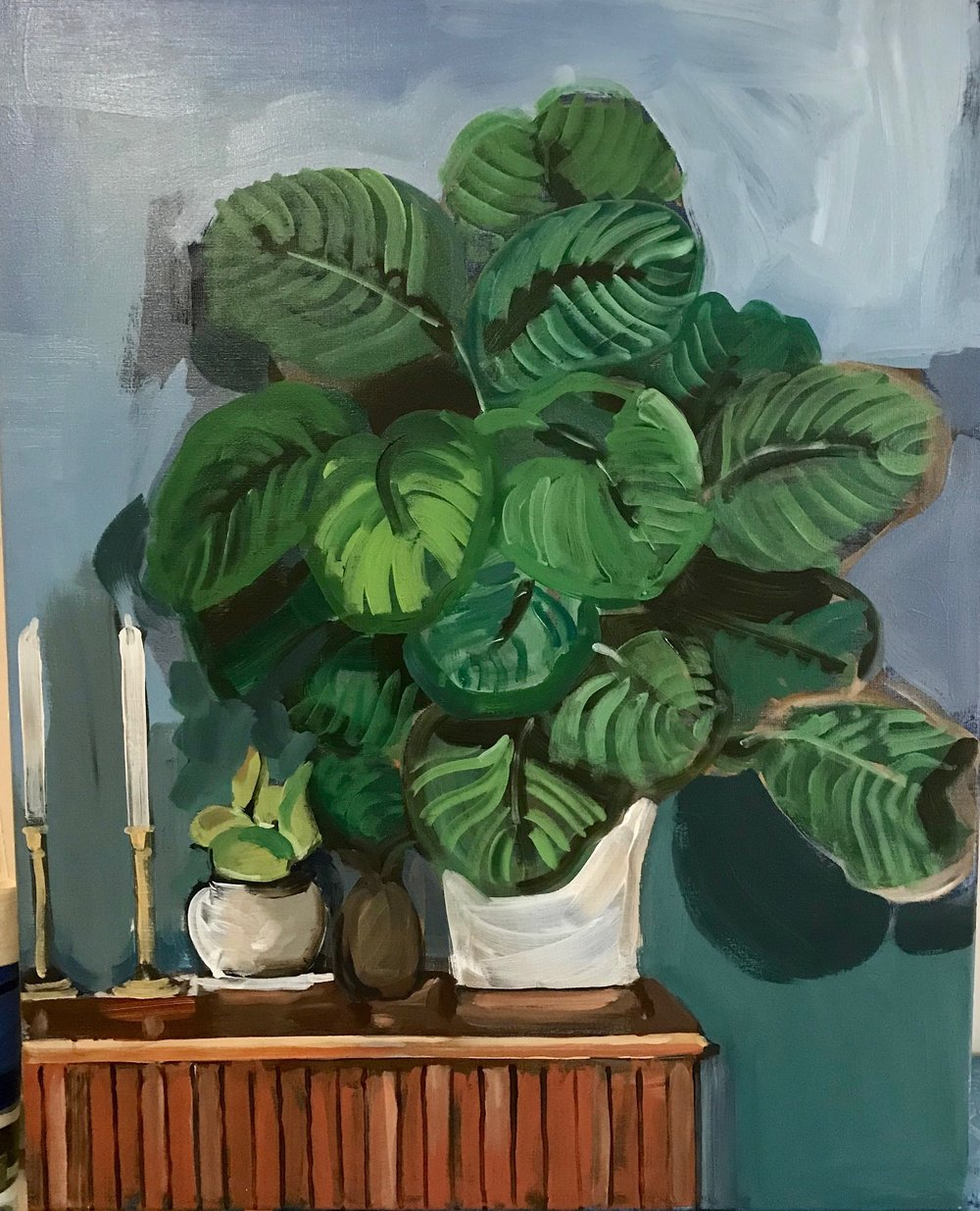 Calathea 100 x 80cm oil on canvas 2018