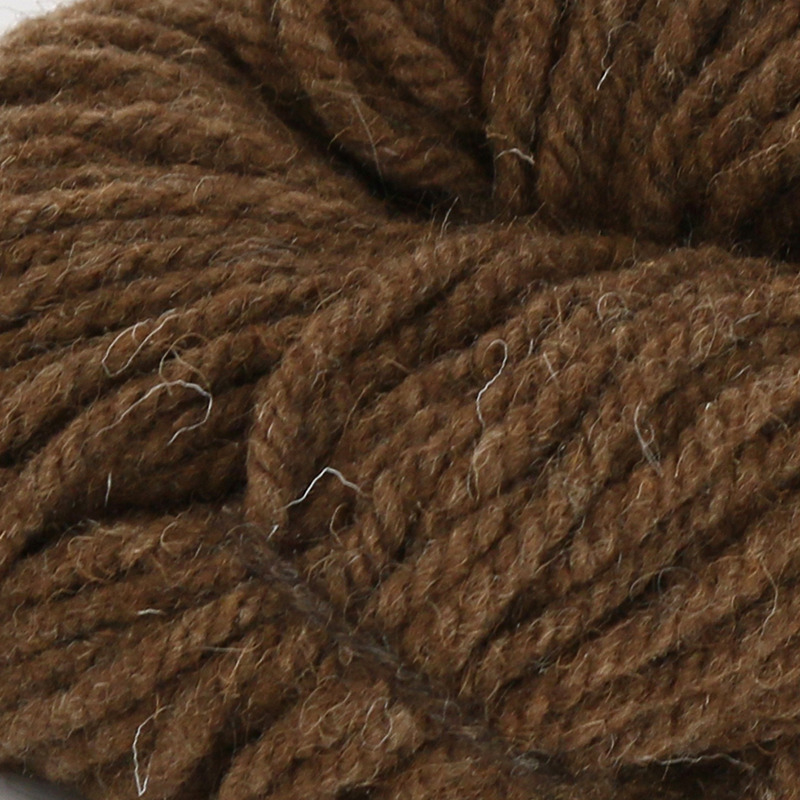 Castlemilk Moorit - Moorit Brown (67m)