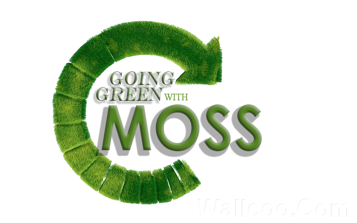 Go Virtual Green with Santana Moss