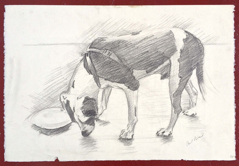 "Untitled (Ranger), Pencil on Paper, 15""x 22"", 2010"