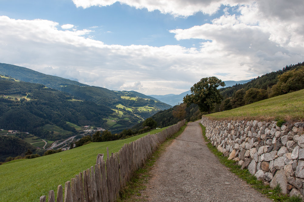 Sentiero delle castagne-8.jpg