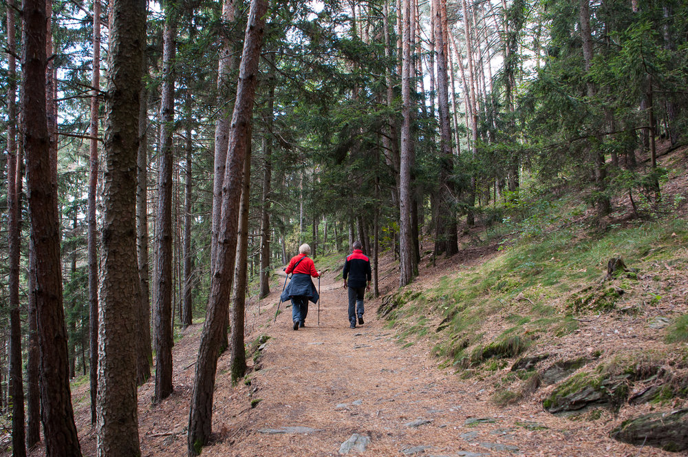 Sentiero delle castagne-3.jpg