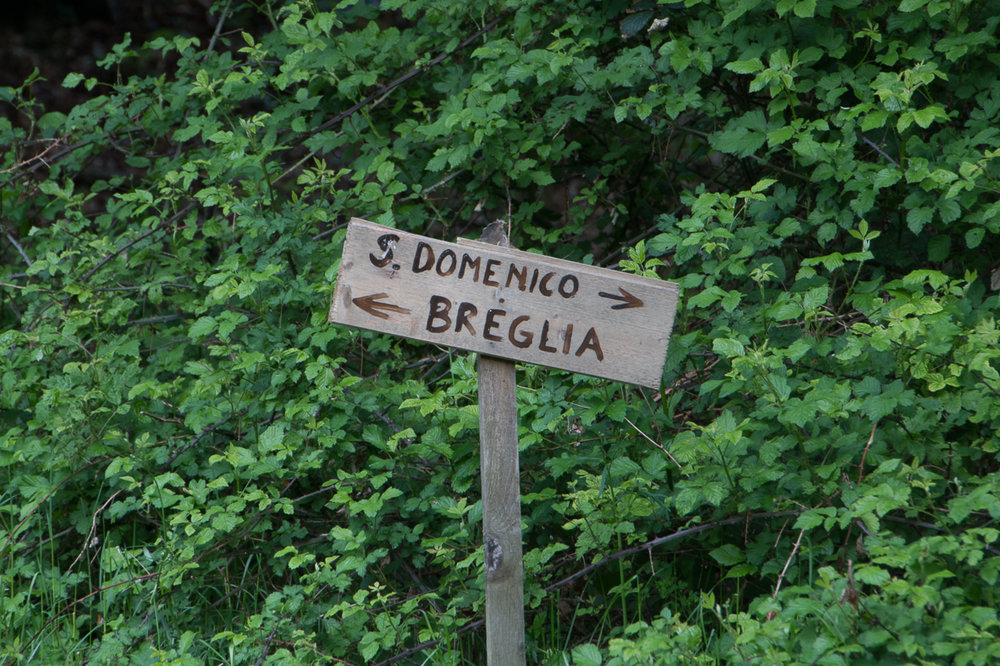 Anello San Domenico-7.jpg